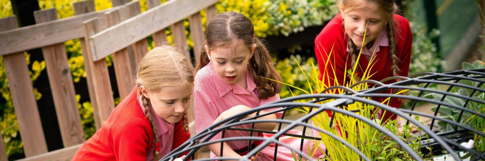 Outdoor Learning for Children
