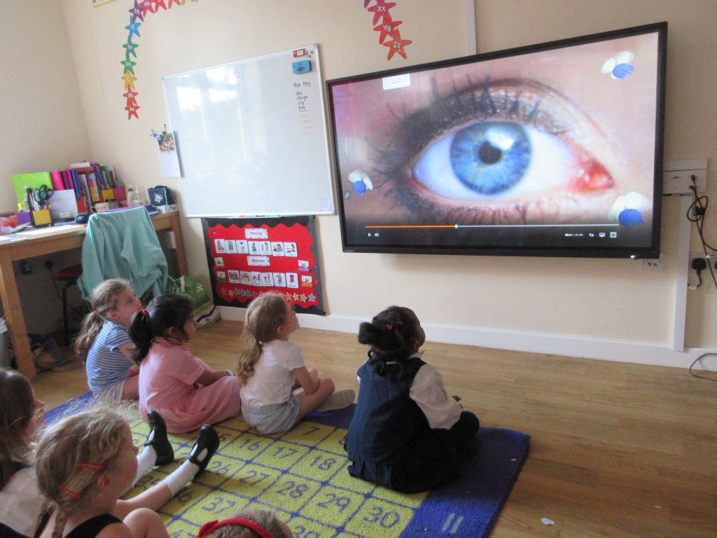 Children looking at the different colours eyes can be